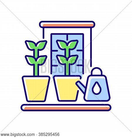 Balcony Garden Rgb Color Icon. Watering Plants On Windowsill. Cultivate Vegetables Indoor. Gardener