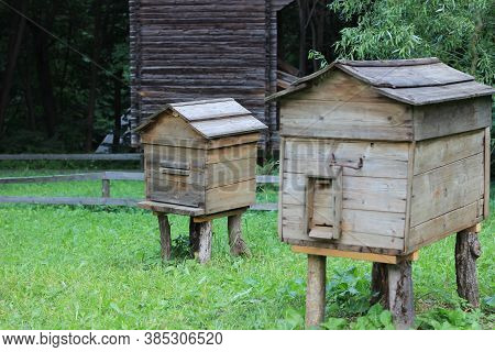Wooden Hives For Bees. Paseka In Nature In The Woods.