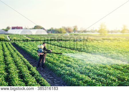 A Farmer With A Mist Sprayer Blower Processes The Potato Plantation From Pests And Fungus Infection.