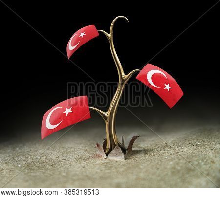 3d Illustration. 3d Sprout With Turkish Flag On Black