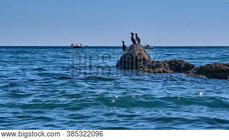 Summer Sea Landscape. Three Cormorants Stand On A Stone By The Sea. People On Water Bicycle Catamara
