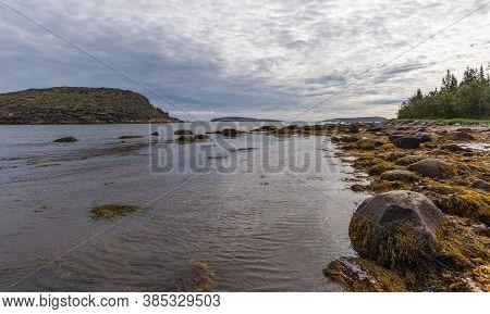 Landscape Island German Kuzov In The Foreground Algae. Kuzova Archipelago Located In The North Of Ru