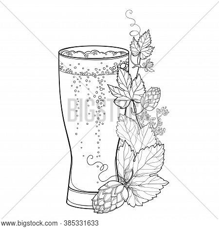 Vector Beer Glass With Outline Hop Or Humulus Leaf And Ornate Cone In Black Isolated On White Backgr