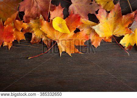autumn leaf on wood blue background (top view) orange leaf on old grunge wood deck, top view, copy space,