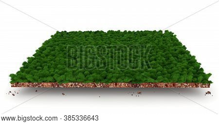 Section Of Soil Layers With Green Grass 3d Illustration, Green Lane Part Slice Isolated On White Bac
