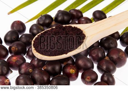 Acai Fruits And Powder Originating In The Amazon (euterpe Oleracea)