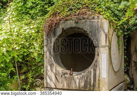 Square Concrete Trash Incinerator With Round Opening With Green Foliage In Background.