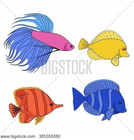 Set Of Color Contour Different Tropical Fish. Fish Rooster, Pennant Fish, Royal Angel. Marine Inhabi