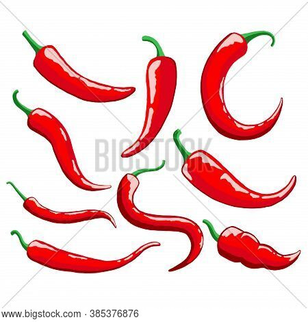 Set Of Chili Pepper Vector Illustration. Red Chili Pepper Icon In Trendy Design Style For Web Site A