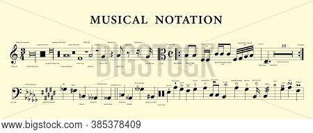 Set Of Vector Musical Notes. Music Notation.