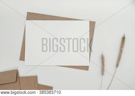 Blank White Paper On Brown Paper Envelope With Bristly Foxtail Dry Flower. Mock-up Of Horizontal Bla