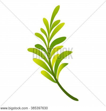 Rosemary Icon. Cartoon Of Rosemary Vector Icon For Web Design Isolated On White Background
