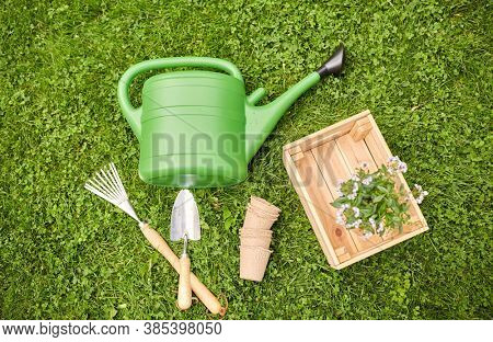 gardening concept - watering can, garden tools, pots and flowers in wooden box at summer