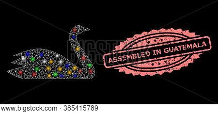 Shiny Mesh Net Goose With Bright Dots, And Assembled In Guatemala Dirty Rosette Seal. Illuminated Ve