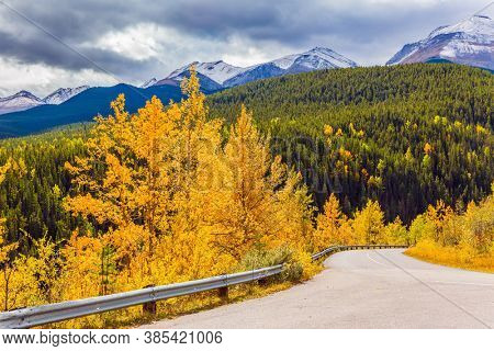 Orange, yellow and red leaves of aspens and birches. The magic colors of northern autumn. Road to Miette Hot Springs - the Hottest Springs in the Rockies. Concept of active, car and photo tourism