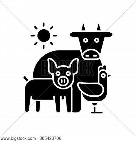 Animal Husbandry Black Glyph Icon. Farm Livestock. Breeding Cattle. Farmland Production. Pig And Chi
