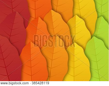 Pattern With Autumn Leaves. Autumn Leaf Isolated On Transparent Background. Yellow Autumnal Garden L
