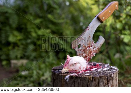 A Bloody Chicken Head Is Lying On A Stump. Slaughter Of Poultry. In The Background, An Axe Stuck In