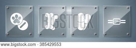 Set Collar With Name Tag, Dog And Pills, Dog Bone And Dog And Pills. Square Glass Panels. Vector