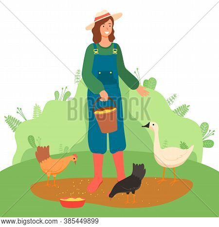Young Woman Or Girl Farmer In Hat And Overalls Feeds Poultry Grain. Girl Takes Care Of Chickens, Gee