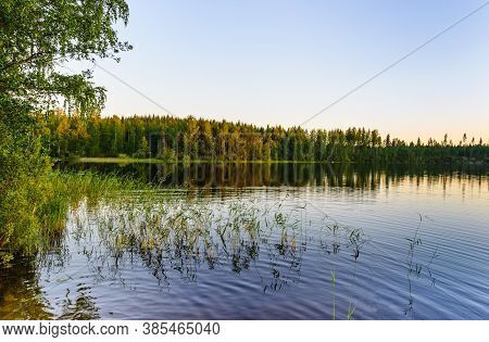 Evening View Of The Lake In Calm Weather. In The Foreground There Is Grass.  Haukivesi Lake, Saimaa