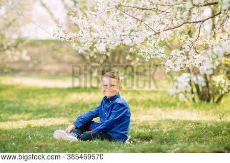 Happy Child Boy Sits In Green Grass On Sunlit Glade Against Background Of Blooming Spring Garden.