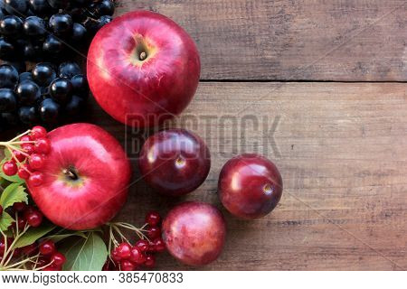 Red Apples, Grapes, Plums, And Viburnum Berries On Wooden Table. Autumn Harvest Background. Top View