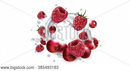 Cranberries And Raspberries In Splashes Of Yogurt Or Milk.