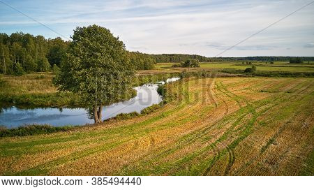 Summer Background With Alder Tree On Riverbank. Agriculture Fields After Harvest