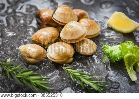 Seafood Shellfish On Ice Frozen At The Restaurant / Fresh Shell Clam With Herb Ingredients For Salad