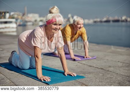 Joyous Active Elderly Married Couple Exercising Outdoors