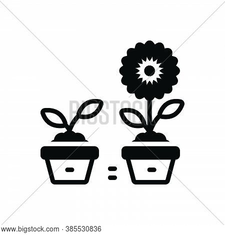 Black Solid Icon For Improve Recover Rectify Retouch Renovate Ameliorate Develop Progress Plant Flow