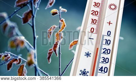 The Thermometer On A Background Of Frost-covered Dry Leaves On A Tree Shows 15 Degrees Of Frost