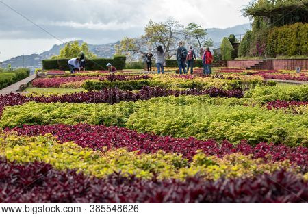 Funchal, Madeira, Portugal - April 23, 2018: Tropical Botanical Garden In Funchal On Madeira Island,