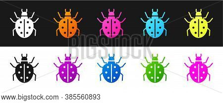 Set Mite Icon Isolated On Black And White Background. Vector