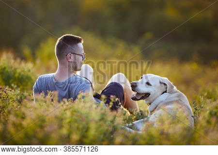 Man With Dog On Meadow At Sunset. Pet Owner Lying With His Cute Labrador Retriever In Grass.