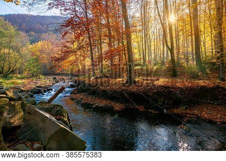 Small Mountain River Among The Forest. Beautiful Nature Scenery At Sunrise. Beech Trees In Colorful
