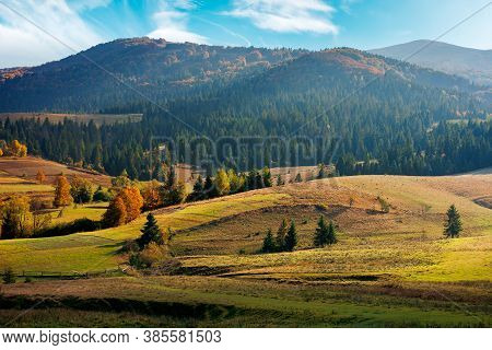 Mountainous Rural Landscape In Autumn Season. Trees And Fields On Rolling Hills. Beautiful Countrysi