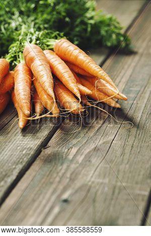 Carrot. Fresh Carrots Bunch On Rustic Background. Raw Fresh Organic Orange Carrots.