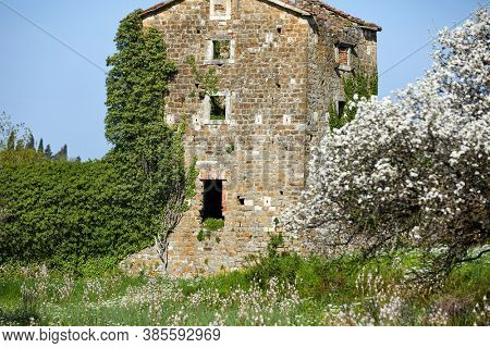 old house in Montenegro, spring