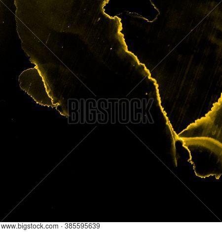Vibrant Pattern. Creativity Image. Alcohol Ink Pattern. Black Gold Vibrant Pattern. Aquarel Backdrop