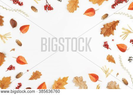 Autumn Composition. Frame From Of Autumn Leaves, Acorns, Berries On White Background. Flat Lay, Top