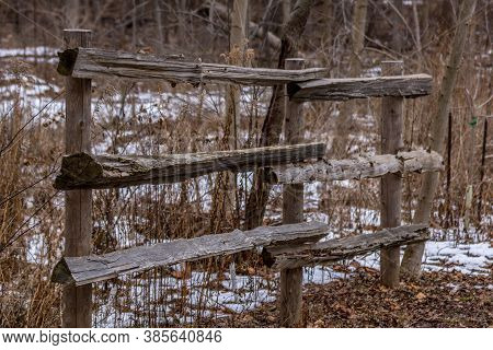 Cedar Fence In Rattray Marsh In The Winter