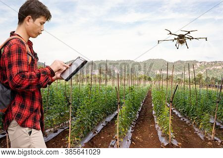 Smart Farmer Using Technology Control Agriculture Drone Farming Fly To Spray Fertilizer Or Insectici