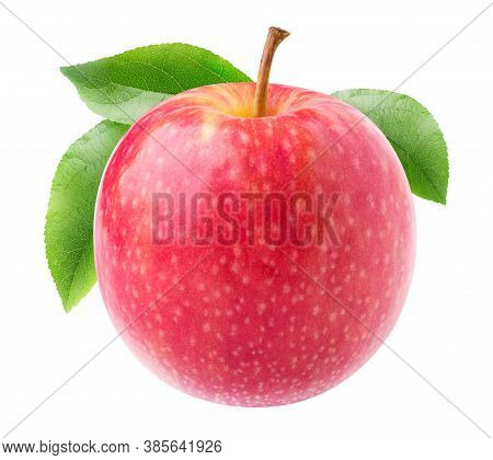 One Pink Apple With Long Stem And Leaves Isolated On White Background