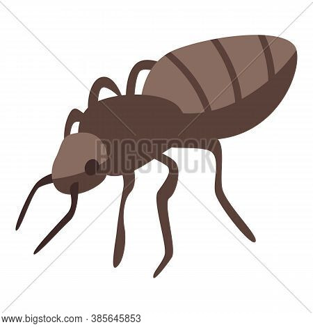 Ant Icon. Isometric Of Ant Vector Icon For Web Design Isolated On White Background