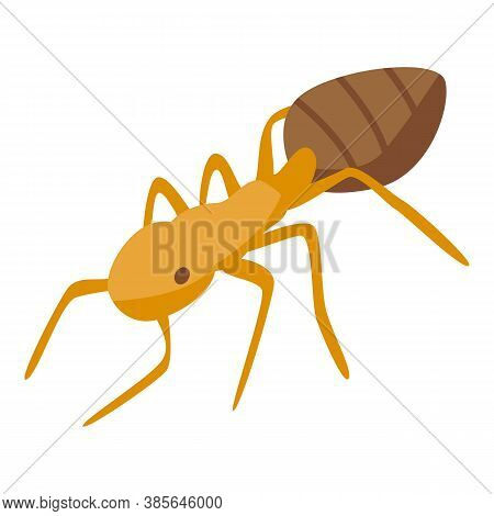 Team Ant Icon. Isometric Of Team Ant Vector Icon For Web Design Isolated On White Background