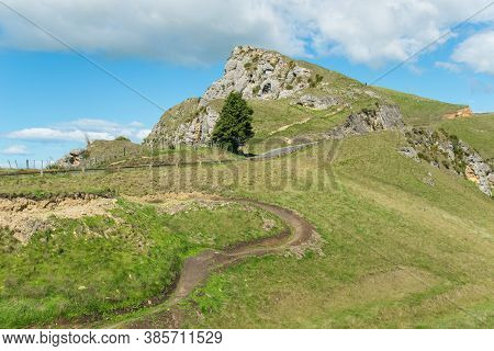 Tramping Trails To The Summit Of Te Mata Peak An Iconic Legendary Mountains In Hawke's Bay Region Of