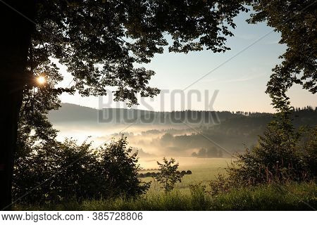Trees fog mist Nature landscape sunrise Nature landscape sun Nature background Nature landscape Nature background Nature landscape Nature landscape background Nature background landscape Nature landscape Nature background landscape Nature background.