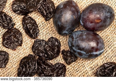 Juicy Black Plums And Dried Prunes On A Homespun Cloth With A Rough Texture. Close Up. Autumn Harves